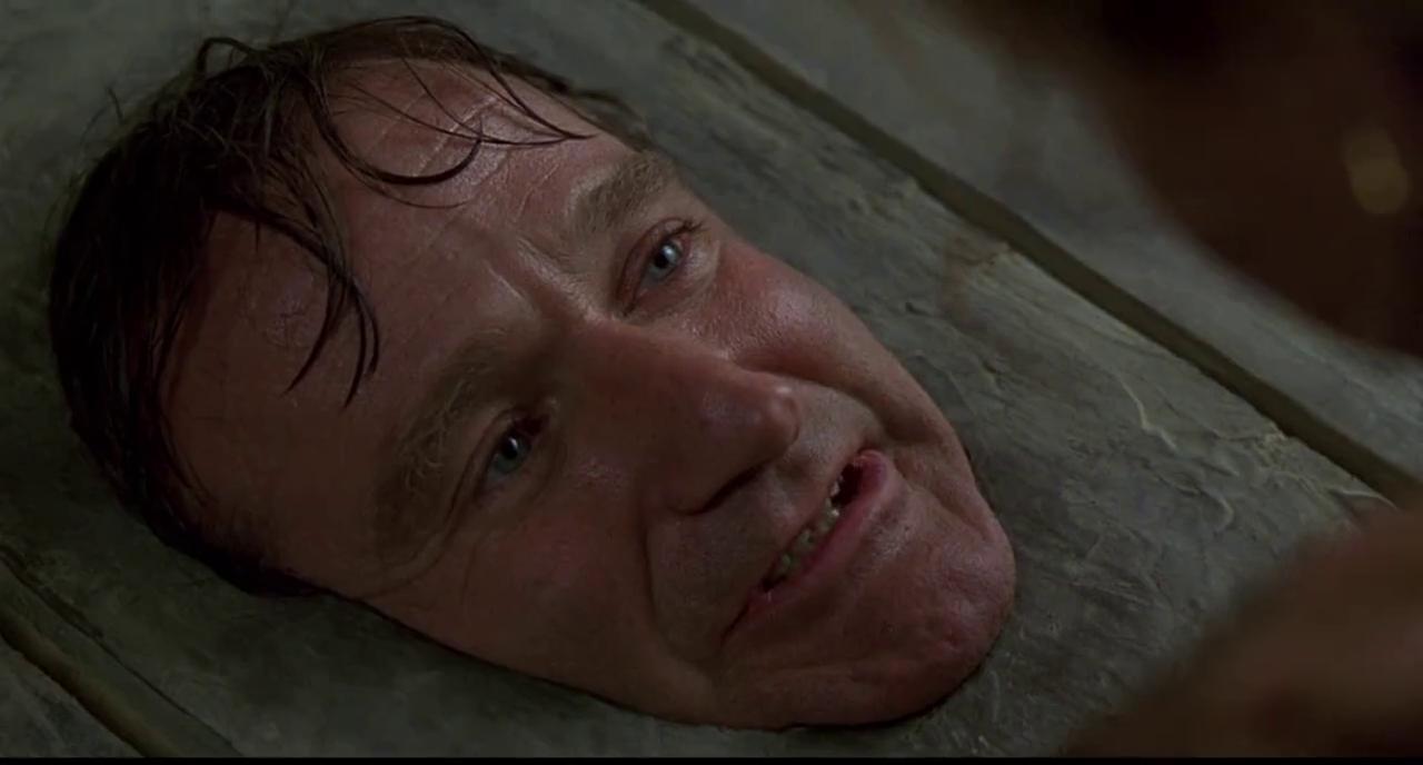 Robin Williams Jumanji 15 Most Iconic Robin W...