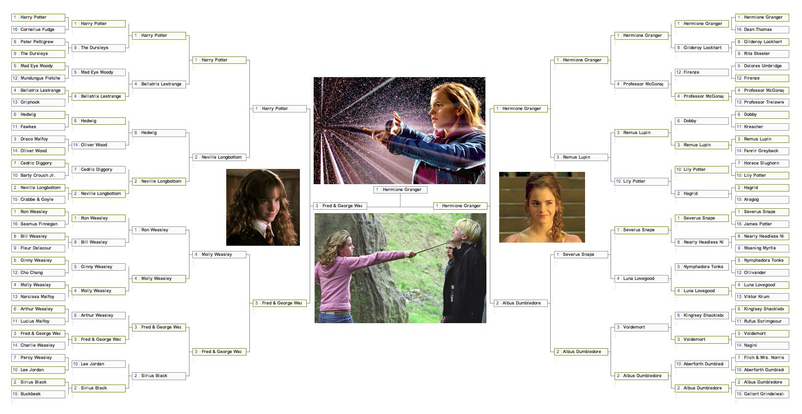 100 Book Hermione Vs Movie Hermione Hermione Granger